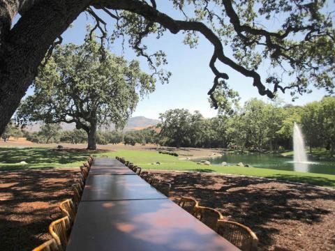 Extendida bajo un árbol junto al lago hay una larga mesa de banquete perfecta para cenas [RE]