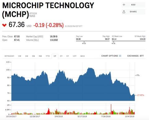 12. Microchip Technology