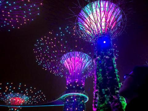 Los súper árboles artificiales de los Jardines de la Bahía de Singapur.