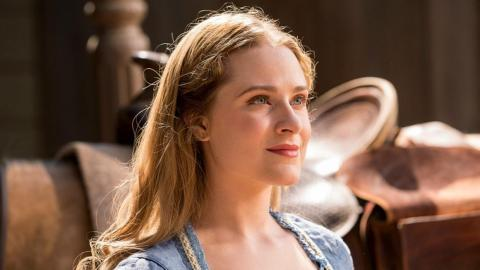 "250.000 dólares — Evan Rachel Wood, ""Westworld"" (HBO)"