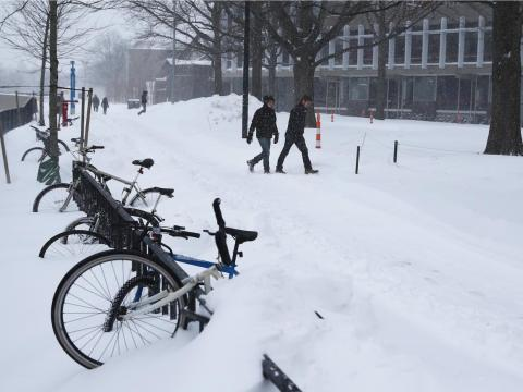Cambridge sees about 52 inches of snowfall a year.