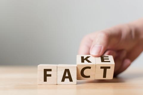Fake Fact