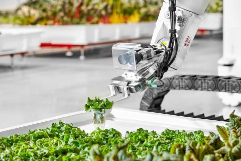 [Re] Primera granja autónoma con robot