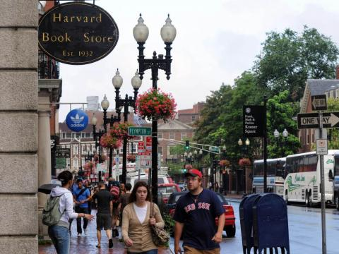 More than 8 million tourists venture to Harvard Square each year.