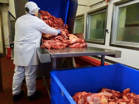 Lo primero que ves al entrar en la fábrica es cómo se supervisa toda la carne que entra.