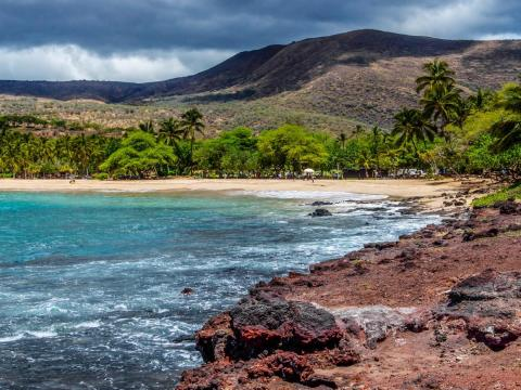 The ultra-wealthy love buying islands. In 2012, billionaire Oracle founder Larry Ellison bought 97% of a 90,000-acre Hawaiian island for $300 million.