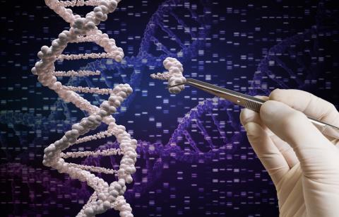 Humanos modificados genéticamente