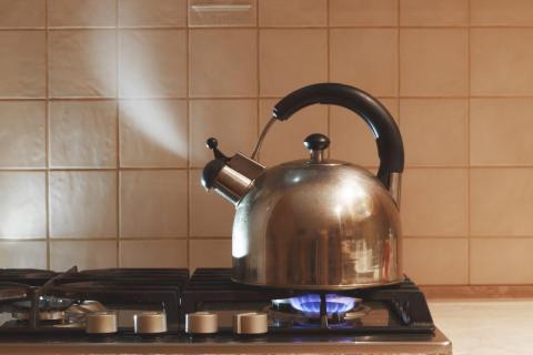 Drinking warm liquids, like caffeine-free tea, can help kids feel better when they're sick, Bernstein said.