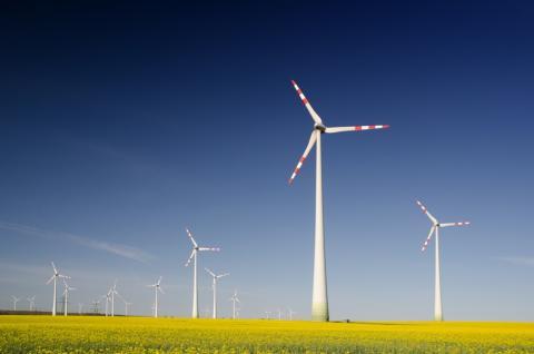 Granja eólica molinos de viento