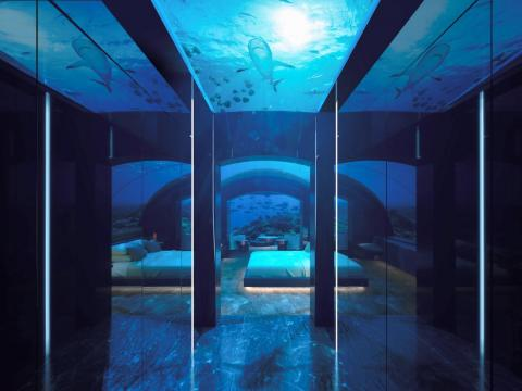 Guests can make their way down below the waves via a spiral staircase or elevator. A domed ceiling and expansive windows offer panoramic views of the deep blue.