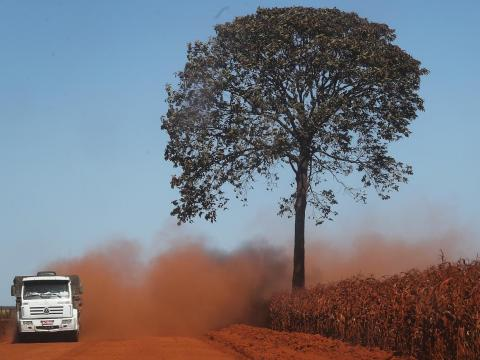 Other Side Globe Truck Drivers Brazil Drive Through Deforested Sections Amazon