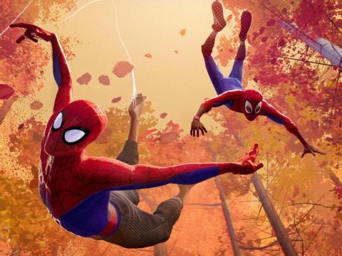 'Spider-Man: Un nuevo universo'.