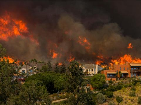 """Ultimately, """"nobody is free from the impacts of climate change,"""" Mann said."""