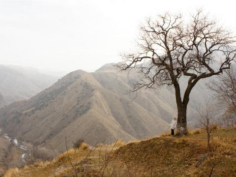 Garni Gorge.