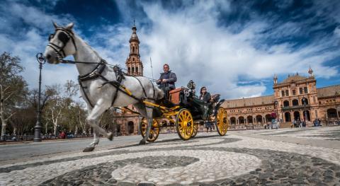 Coche de caballos Sevilla