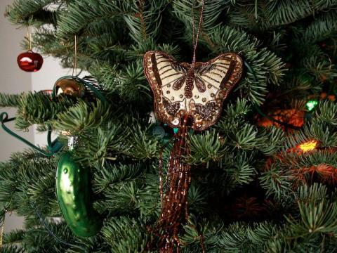 ¿Puedes encontrar el pepinillo decorativo en este árbol?