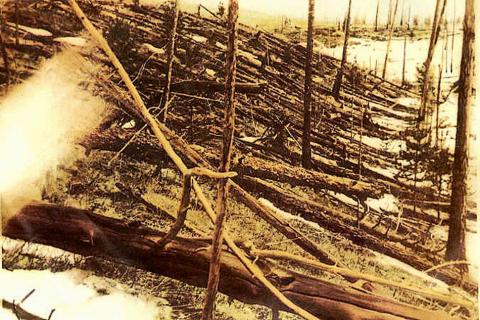 A photograph of trees blasted down by the Tunguska Event in 1908.