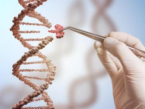 Researchers also figured out other advanced new ways to make babies. But a recent announcement about genetically edited babies drew questions and criticism from scientists around the world.