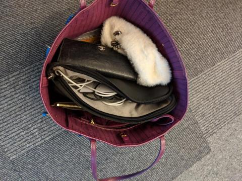 "Rincon's work bag usually contains her computer, wallet, phone, a hair tie, and some lipstick. ""I also throw in a fuzzy tuque (I am Canadian, after all) for when the weather gets cooler here in Mountain View,"" Rincon said."