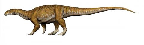 Scientists discovered two new kinds of giant dinosaurs.