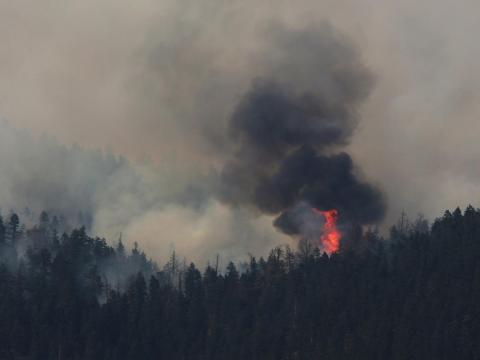 Varios incendios arrasaron la Columbia Británica canadiense.