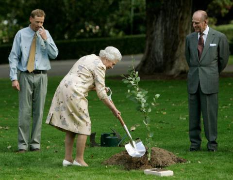 You do the gardening, too …