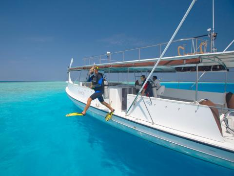 Adventurous guests can go diving ...