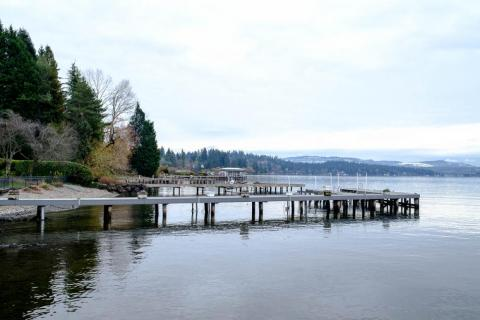 Almost all of the houses on the water in Medina have a dock and a small private beach.<br>Lake Washington is a popular place for swimming, water sports, and boating in the summer.