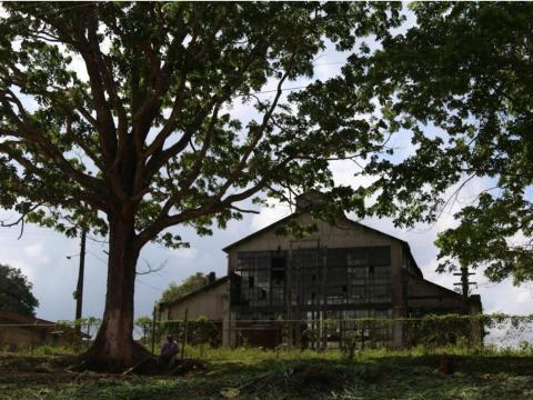 If it weren't for the decomposing structures, Fordlandia might seem like any other rural town in Brazil.