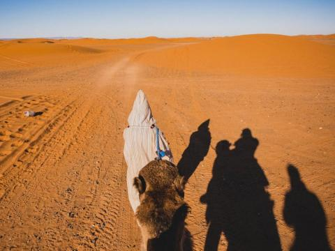 When I got to Morocco, I knew that I needed to visit Erg Chebbi, possibly the most iconic way to see the Sahara Desert. Erg Chebbi is one of Morocco's many ergs, or seas of sand dunes. It is often used for films because of its