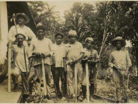 Native Brazilians were also among those hired in Fordlandia to work in the factories.