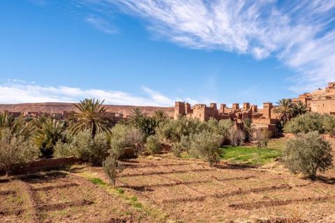 Fuera de la ciudad fortificada yacenlos campos de cultivo, como los granos que pueden sobrevivir en el árido clima desértico.