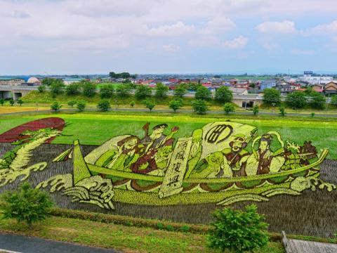 Rice farmers started making painting-like images in the paddies by planting different color rice plants in certain areas — think of it as a paint-by-numbers exercise.