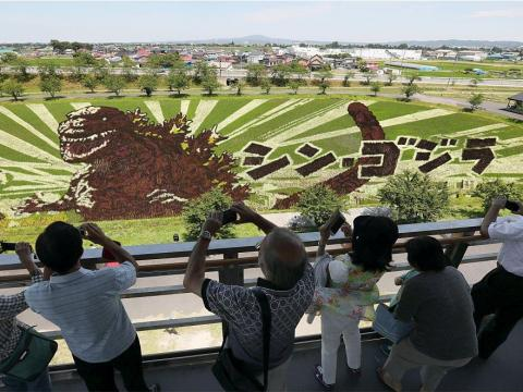Rice paddy art combines the city's emphasis on agriculture and love of art into something everyone can experience.
