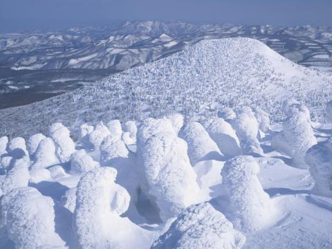 "There are also trees all along the nearby Hakkoda mountains that get buried in snow and ice throughout the winter that have come to be known as ""silver frost sculptures"" or ""snow monsters."""