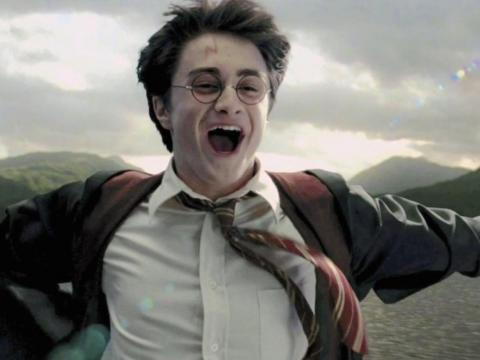 """There are some things you might not know about the """"Harry Potter"""" series."""