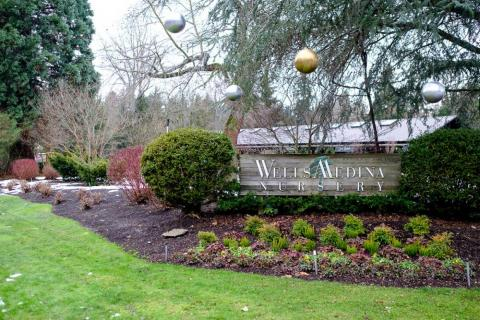 The Wells Medina Nursery, a plant store about a mile from the post office, is the only other store in town.<br>Most shopping can be done in nearby Bellevue.