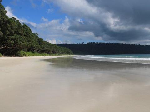 16. Playa Radhanagar, Isla Havelock, India.