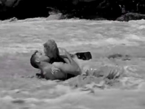 """From Here to Eternity""fue dirigida por Fred Zinnemann."