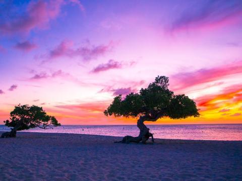 3. Eagle Beach, Palm, Aruba.