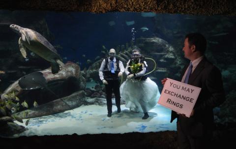 Una foto del oficiante de boda fuera del tanque.