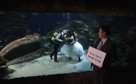 La pareja se dio su primer beso como casados debajo del agua.
