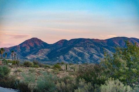 Desierto de Sonora en Sierra de Santa Catalina, Oracle, Airzona, EEUU