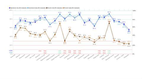 Diferencias en la experiencia en función del tamaño de la empresa.