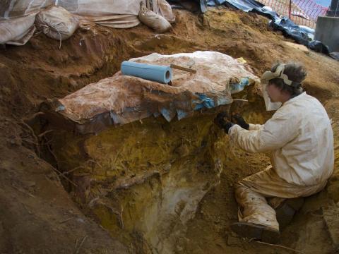 Excavación paleontología en campus de la NASA