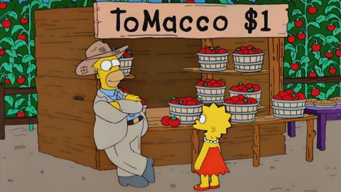Los Simpson- Tomaco