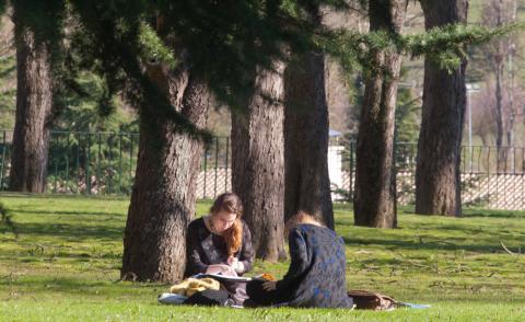 Alumnas estudiando en el campus de la facultad de ciencias de la Universidad de Navarra.