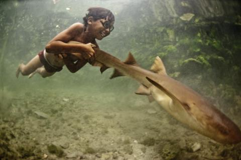 Diving is an everyday activity, causing the Bajau to rupture their ear drums at an early age.