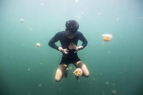 """Hong Kong fishing companies introduced the cyanide to the Bajau. According to Morgan, it was a trap. """"They give the Bajau the cyanide and the Bajau have to pay back the fee in fish, but they can never fish enough to pay it off,"""""""