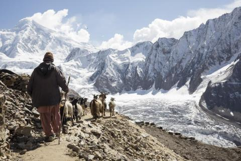 In this photo, a meat vendor brings goats to supply to the gem miners. Because of the high altitude, all the supplies and equipment must be brought in from the villages and valley below.